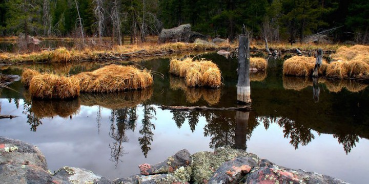 Beaver-pond-Uinta-Canyon-hdr-720x360 Questions On A Job Application Form on regarding sanctions medicare,